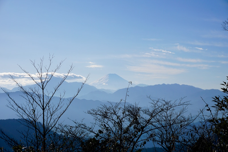 First Timer's Guide to Hiking Mt. Takao